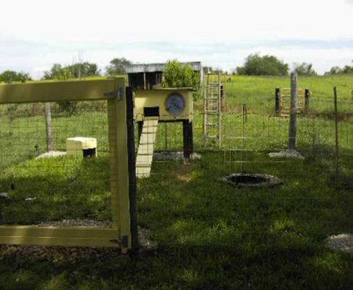 a fenced rabbit pen showing a hutch with a ladder