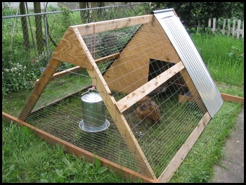 An A-frame chicken coop