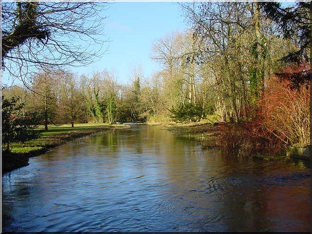 A river in rural Berkshire, UK