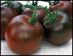 Blach Russian Heirloom Tomato