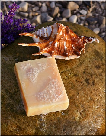 Handmade soap on a stone with a shell