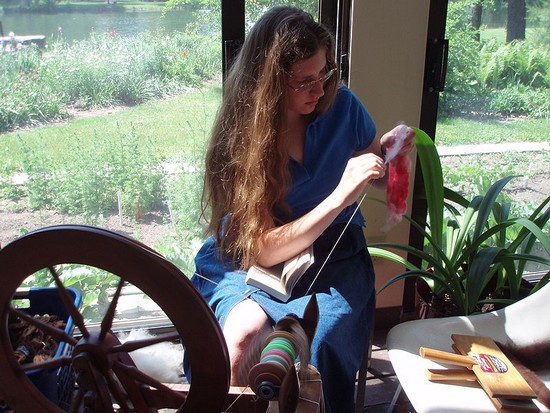 a young handspinner teasing out the fleece while sitting at her spinning wheel