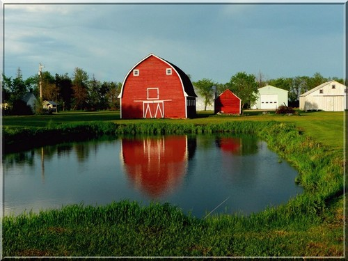 A red barn and farm dam on a Candian farm