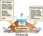 How to make compost thumbnail