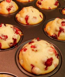 Cranberry muffins just come out of the oven.