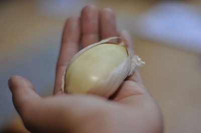 An elephant garlic clove in the palm of a hand.