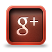 Google Plus Social Icon www.countryfarm-lifestyles.com