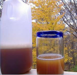 Homemade apple cider in a glass.