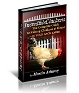 incredible chickens ebook