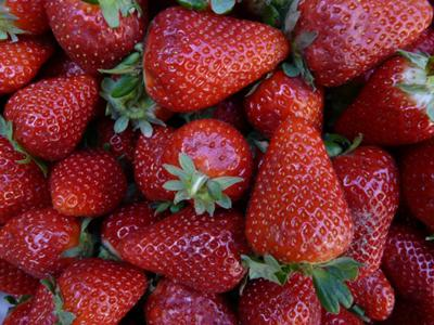 strawberries galour!