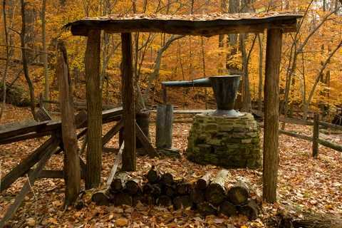 Old Moonshine Still in a Forest