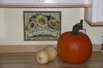 Here is the pumpkin before it started to turn green.