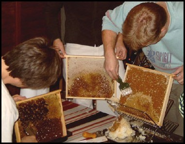 bee keeping and removing the capping