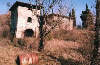 Uncleared land around the Tuscan Farmhouse before the clearing of land