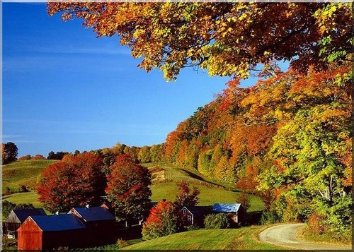 USA in the fall with trees and a farmhouse and barns