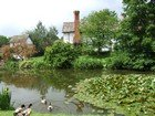 A country home with a pond and ducks.